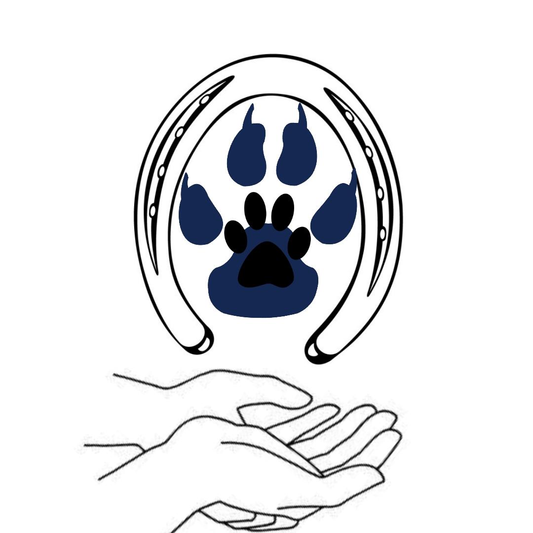 Ostéopathe Animalier – Céline Noël